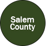 Salem County Button